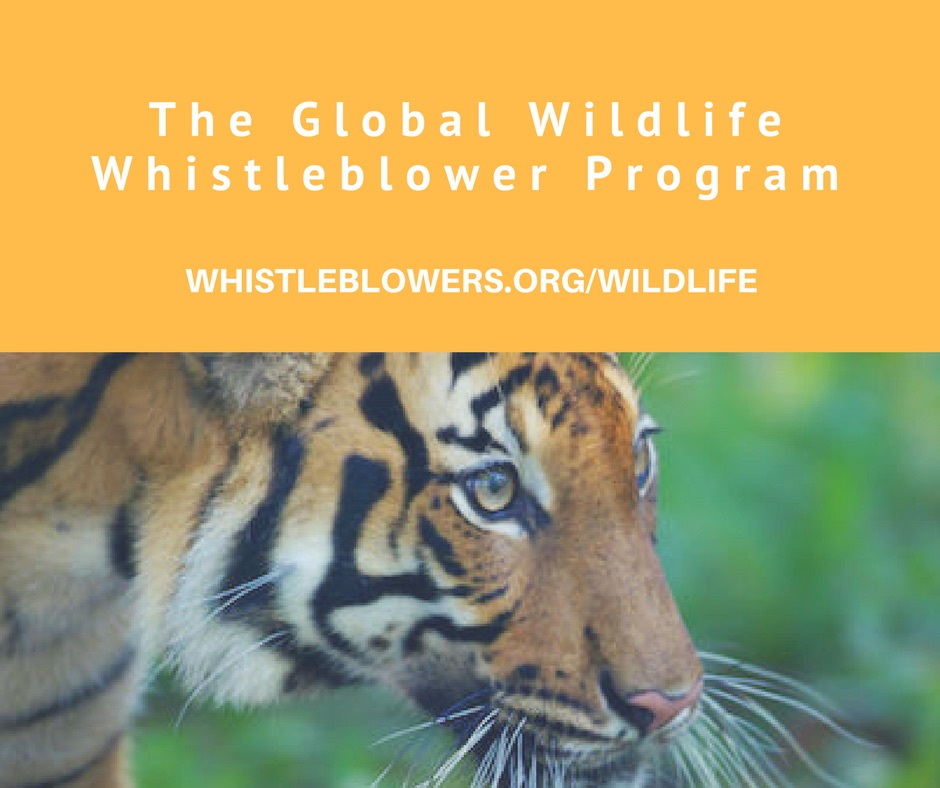 The Global Wildlife Whistleblower Center
